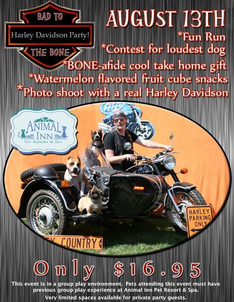 Harley Davidson Flyer harley davidson bad to the bone august 13th