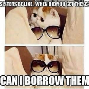 Sister Memes Funny - best 25 funny sister quotes ideas on pinterest