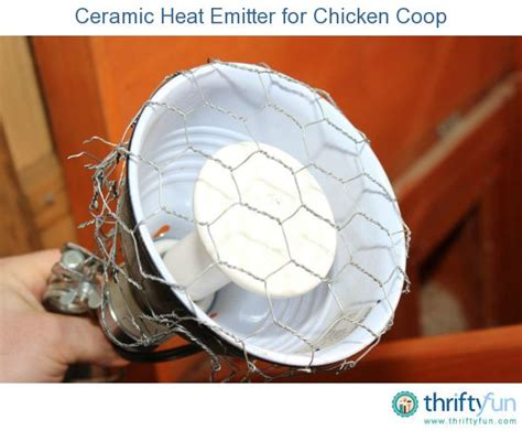 when to use a heat l for chickens pin by laurel sandbeck on thriftyfun stuff pinterest