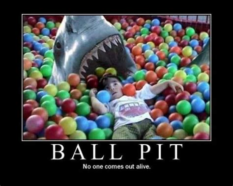 Ball Pit Meme - funny shark pictures
