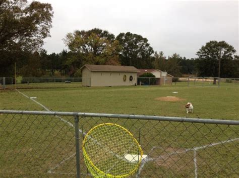 Backyard Wiffle League by Wiffle Fields Stadium Directory Field Ideas
