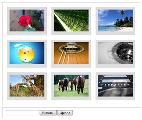 codeigniter gallery tutorial codeigniter from scratch file uploading and image