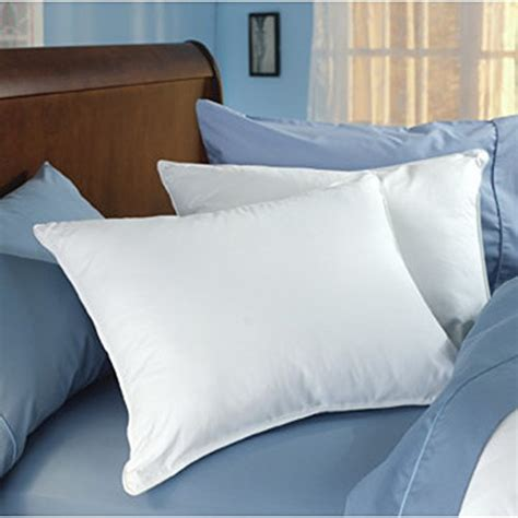 home design down pillow down dreams standard pillow set 2 pillows home decor