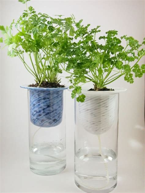 self watering planter gardening pinterest