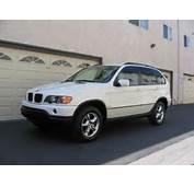 2003 BMW X5  User Reviews CarGurus