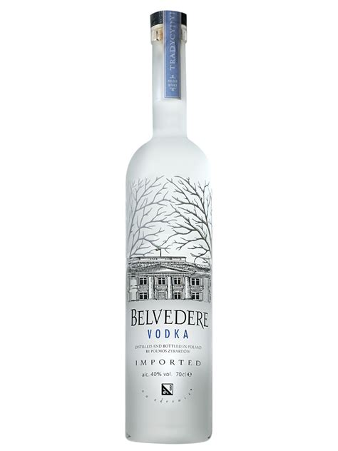 top 10 vodka brands that will get the party started the local brand 174