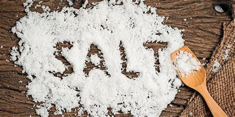 backofen reinigen salz ist guenstig und macht sauber