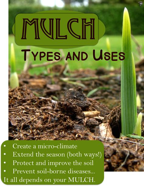 garden mulch types mulches types and uses homestead and gardens
