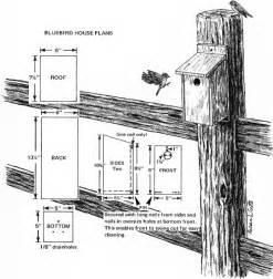 Eastern Bluebird House Plans Garden S Chi March 2012