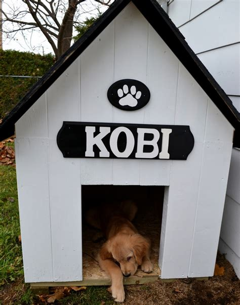 easy dog house diy simple dog house