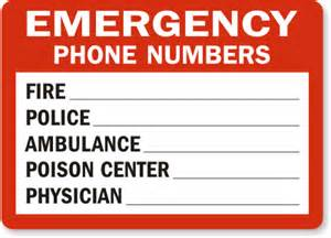 Emergency Department Phone Number David Foley Keller Williams Realty February 2013