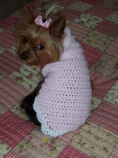 crochet patterns for dog sweaters easy 1000 images about crochet for pets on pinterest dog