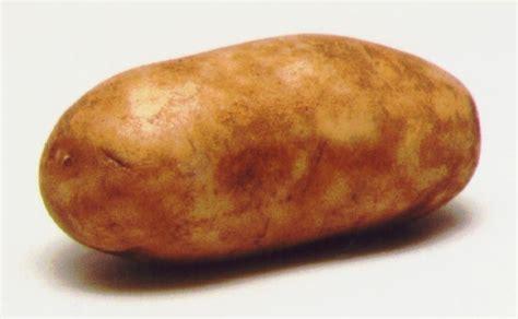 one potato two potatoes three potatoes four looking