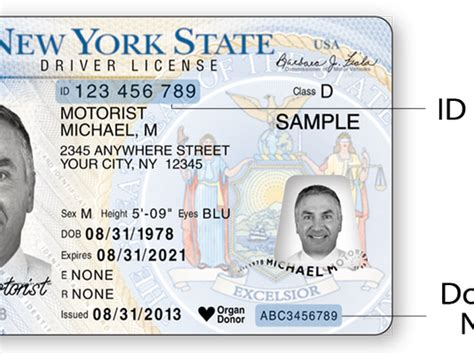 New York Id Card Template by Interim Driver License Restrictions California The Best