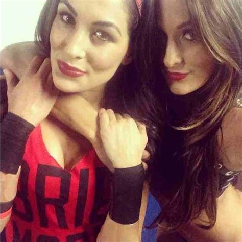 nikki bella birthday date 25 best ideas about nikki and brie bella on pinterest