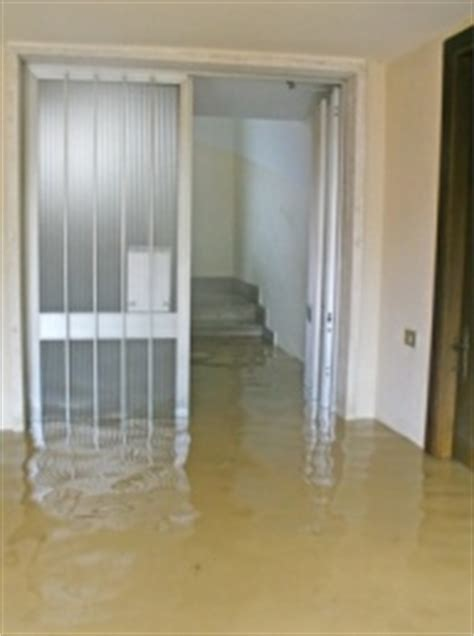 will house insurance cover mold homeowners insurance mold coverage are you covered limits filing a claim