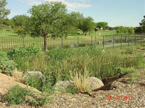 Japanese Garden Picture Of Amarillo Botanical Gardens Botanical Garden Amarillo Tx