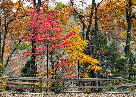 indiana colors indiana fall color photograph by alan toepfer