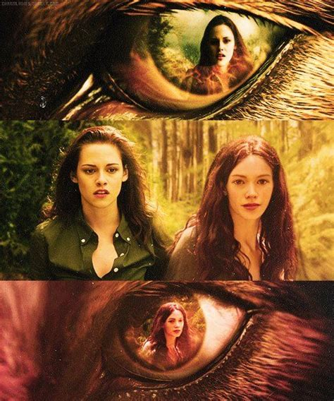 Twilight Saga 1 Twilight Novel Terjemahan the twilight saga renesmee in jacob s twilight best twilight