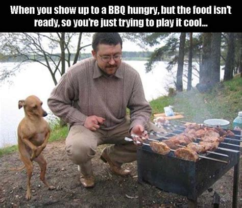 Funny Bbq Meme - funny pictures of the day 37 pics funny pictures