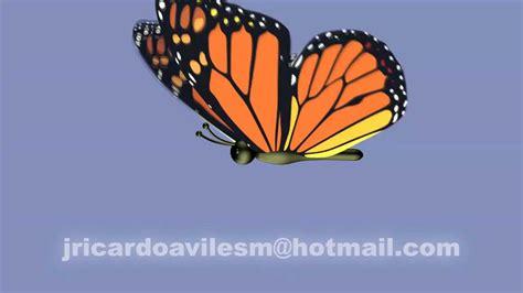 imagenes mariposas volando para hi5 animacion mariposa 3d youtube
