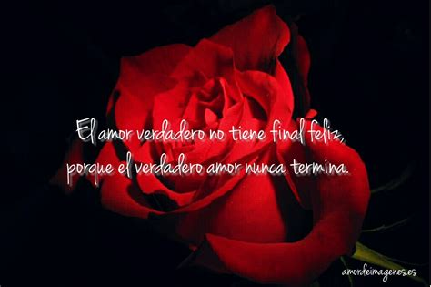 imagenes bonitas de amor de rosas rosas bonitas de amor
