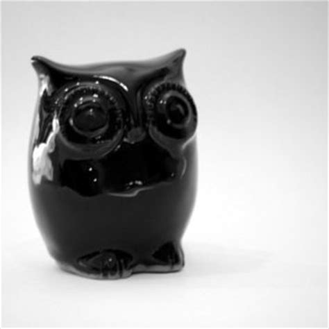 black owl home decor from claylicious on etsy