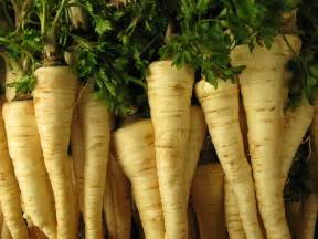 What To Plant In Summer Vegetable Garden - parsley root kitchen basics harvest to table