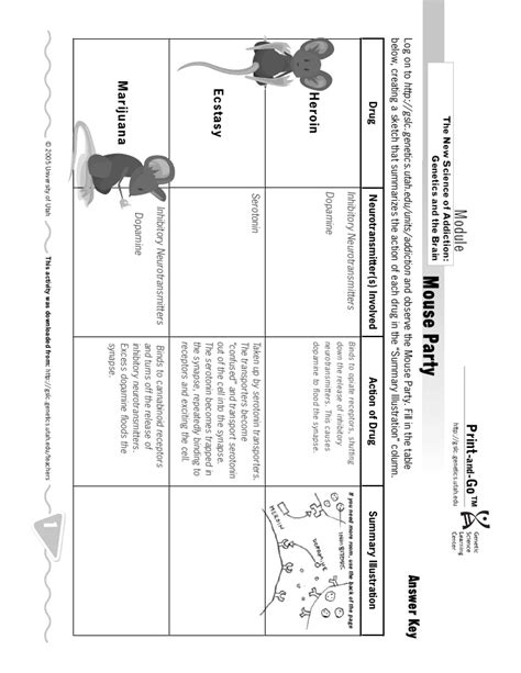 Mouse Worksheet Answers by Mouse Worksheet Lesupercoin Printables Worksheets