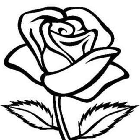 imagenes de una rosa para dibujar faciles dibujos de rosas pictures to pin on pinterest pinsdaddy