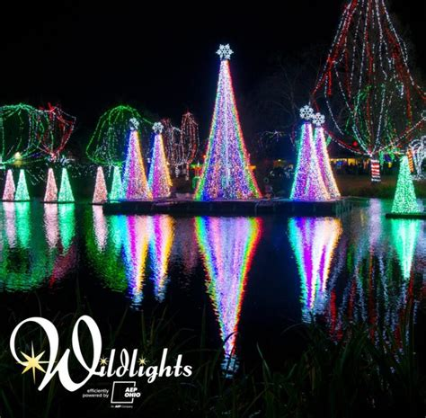 best christmas house displays in columbus ga the best light displays in the state of ohio for 2017