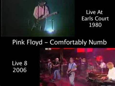 pink floyd comfortably numb youtube pink floyd comfortably numb synchronized high quality