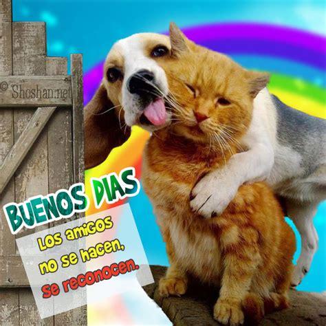 imagenes animadas d buenos dias con animalitos imagen de amistad y buenos d 237 as para tu muro de facebook