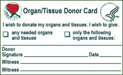organ donor card template paul mcdaniel foundation stroke and donor information