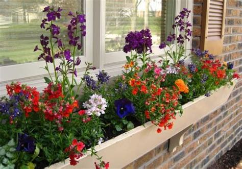 Spring Decorating Ideas Spring Flowers In Window Box Decorating And Home Ideas