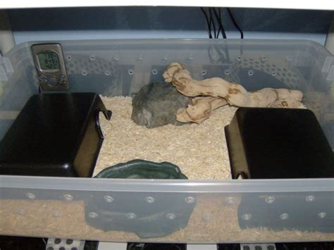 snake bathtub new snake owner need enclosure info ssnakess reptile forum