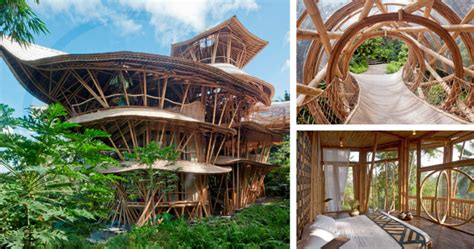 eco homes sustainable tree houses home and gardening incroyables maisons durables en bambou le nouveau paradigme