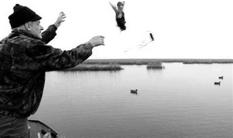 veneziano prozzolo caccia in barena liberazione delle anatre da richiamo