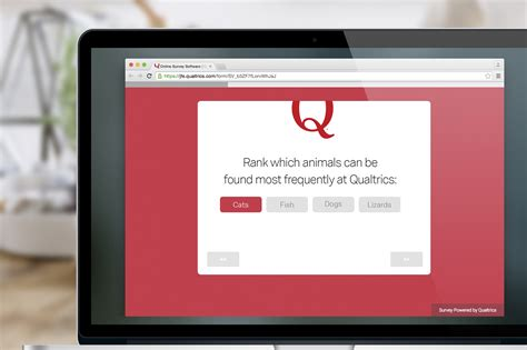 Themes Qualtrics | introducing qualtrics branded themes qualtrics