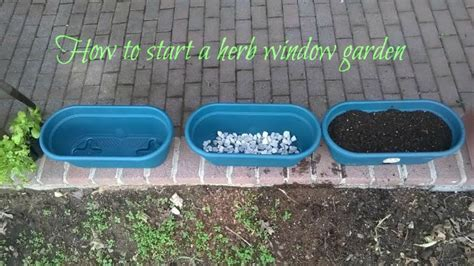 window gardening thrifty herb window gardening what why and how