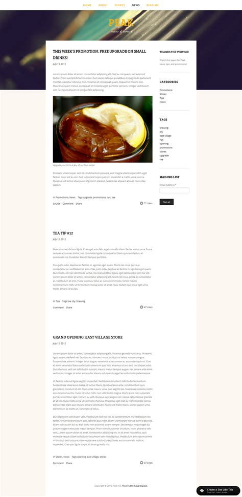 squarespace templates with sidebar squarespace templates your guide to planning squarespace