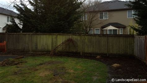 soggy backyard solutions portland landscapers turn wet backyard into usable living