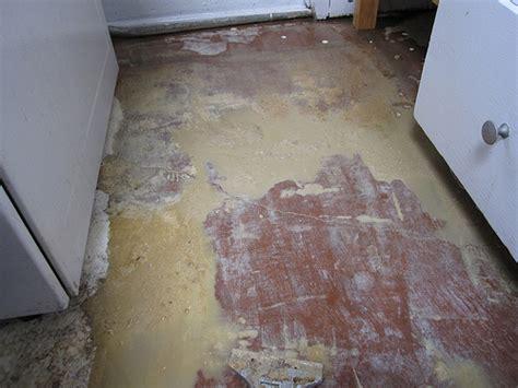 kitchen remove linoleum glue flickr photo sharing