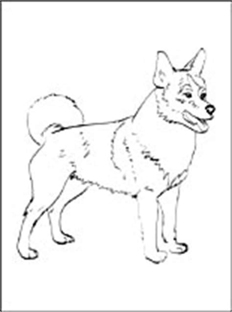 dog breeds coloring pages page