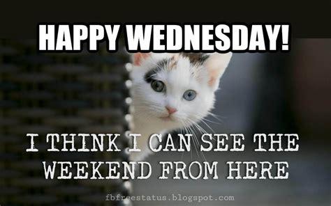 wednesday meme happy wednesday memes