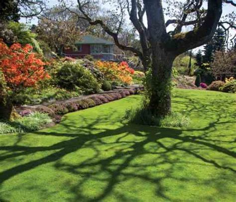 spring landscaping tips spring lawn and landscape tips