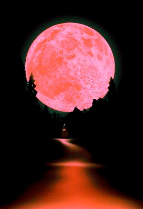 what is a pink moon best 25 pink moon ideas on pinterest full moon pics