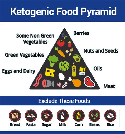 whole grains ketogenic diet ketosis and the ketogenic diet debunking 7 misleading