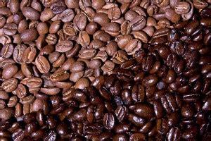 Does Light Roast More Caffeine by Do Light Roasts Less Caffeine Than Roasts