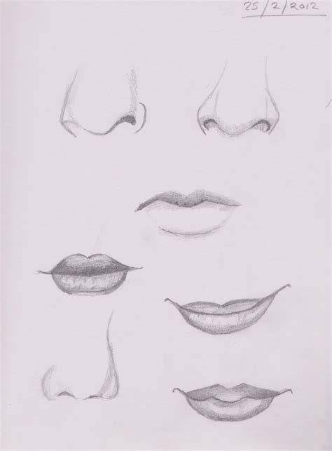 Sketches Nose by Nose And Sketches By Crazymd2 On Deviantart